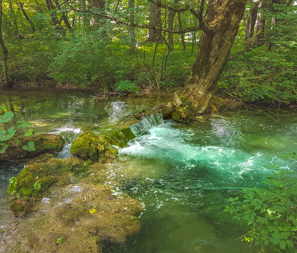 Plitvice Lakes National Park when they change their colour into green