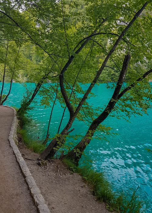 Vibrant blue and green contrast in the lakes of Plitvice