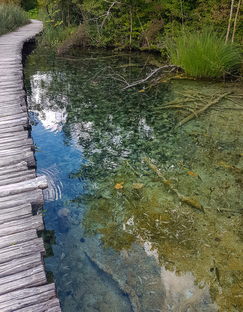 One of the boardwalks and reflection in the lake of Plitvice Lakes National Park in Croatia