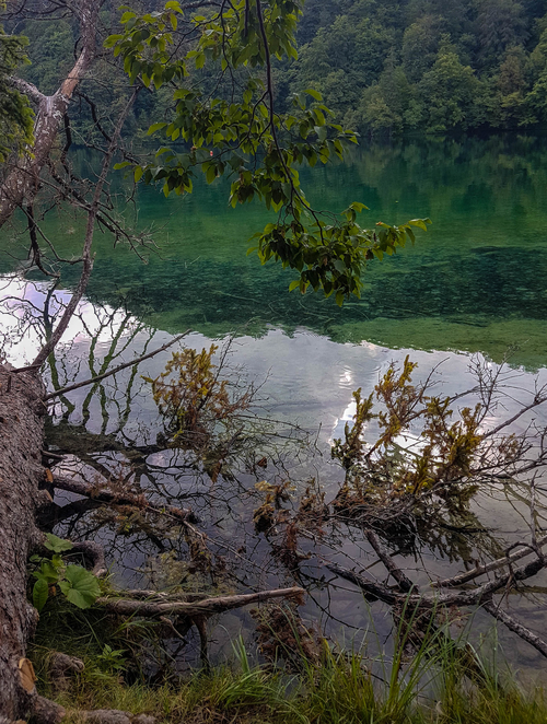 Captivating green nature in Plitvice Lakes