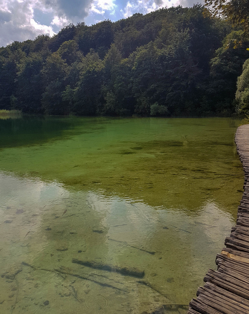Amazing greenish colour in one of the lakes of Plitvice Lakes National Park
