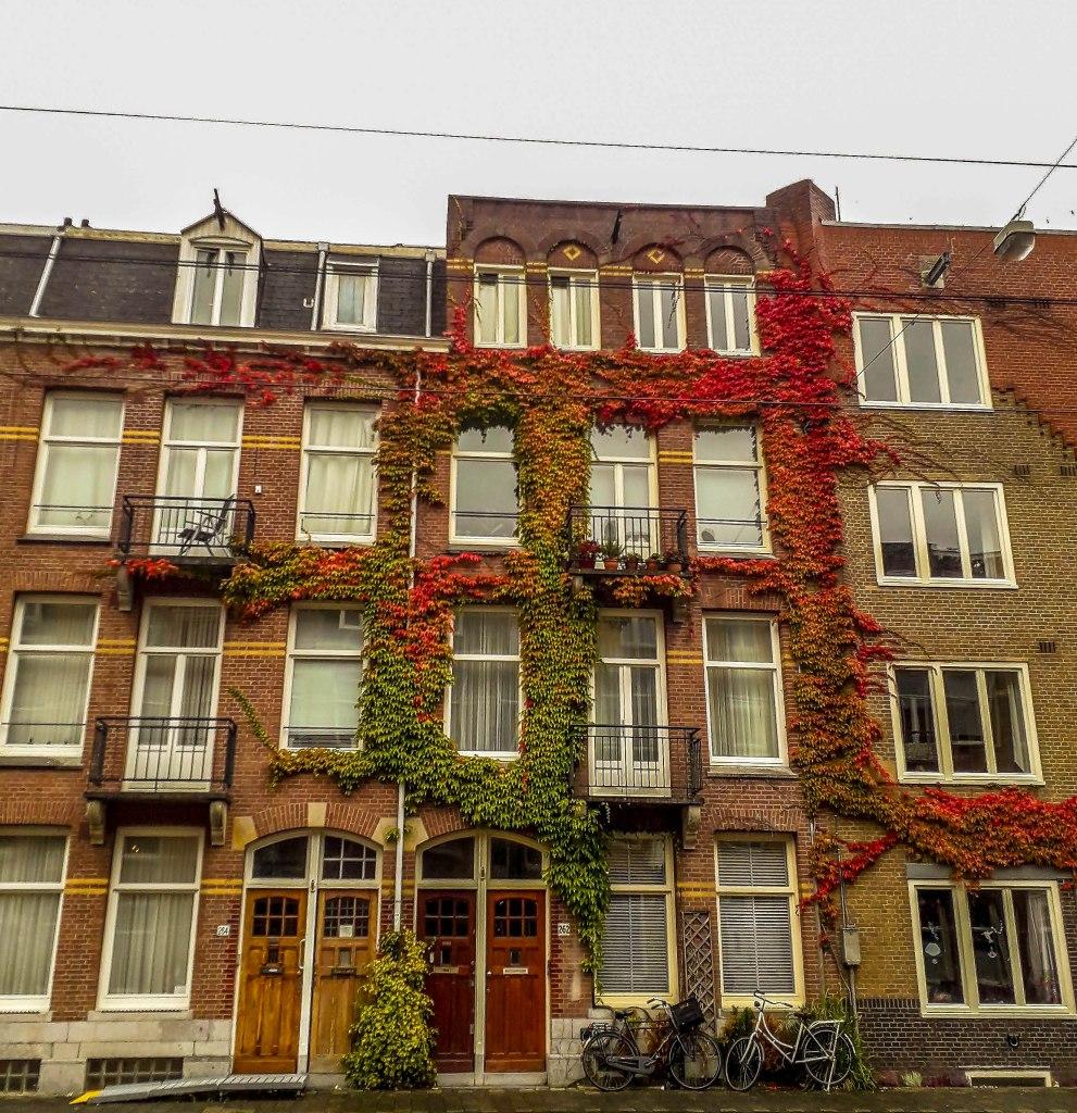 Beautiful flowery houses of Amsterdam