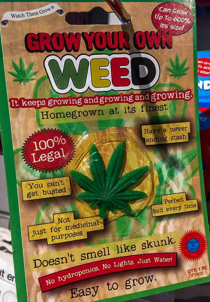 A perfect example of a tourist fraud: Grow your own weed