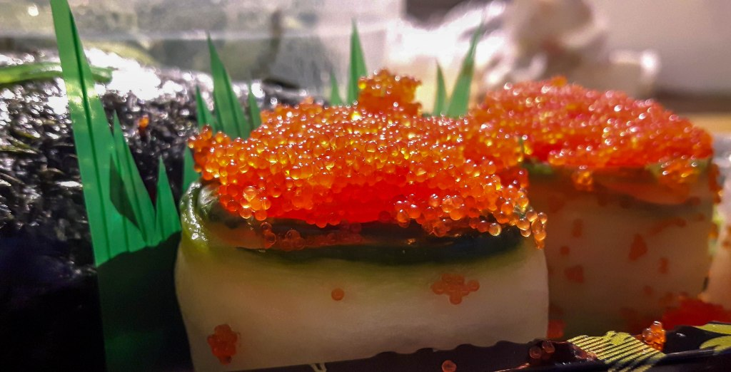 Sushi from close up