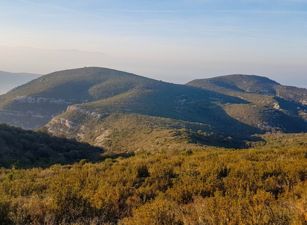 Smooth surfaces of the Montsià mountains