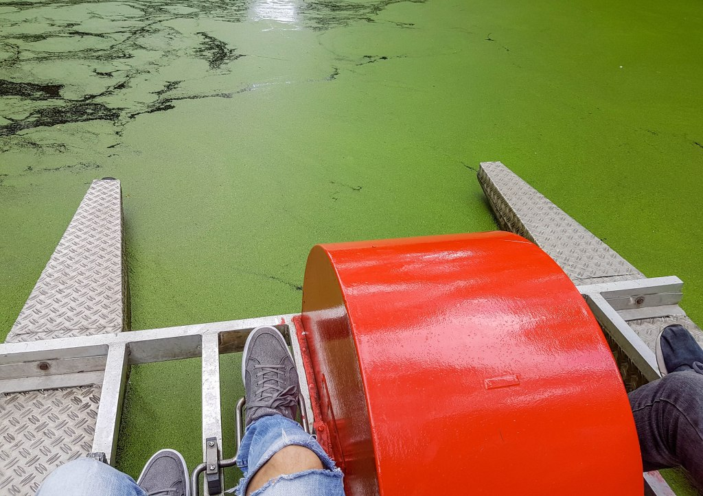 Driving pedalo on the green water surface in Amsterdamse Bos