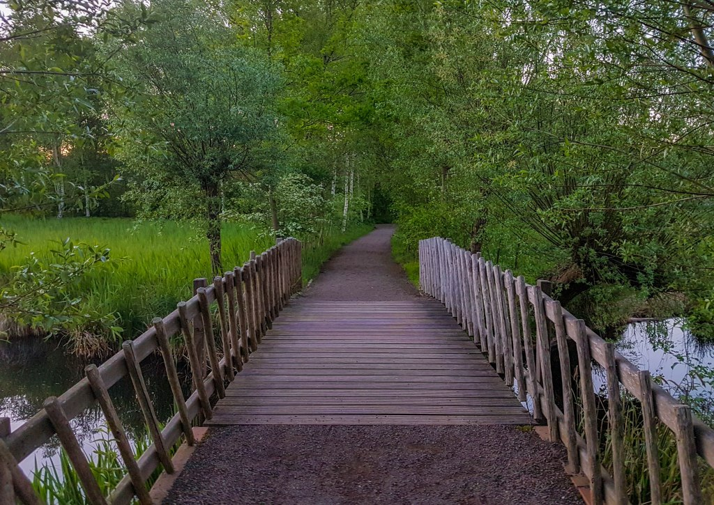 De Braak park wooden bridge in Amstelveen