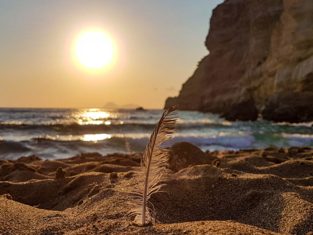 A feather in red sand beach of Crete