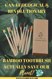 ECO FRIENDLY LIVING: BAMBOO TOOTHBRUSHES