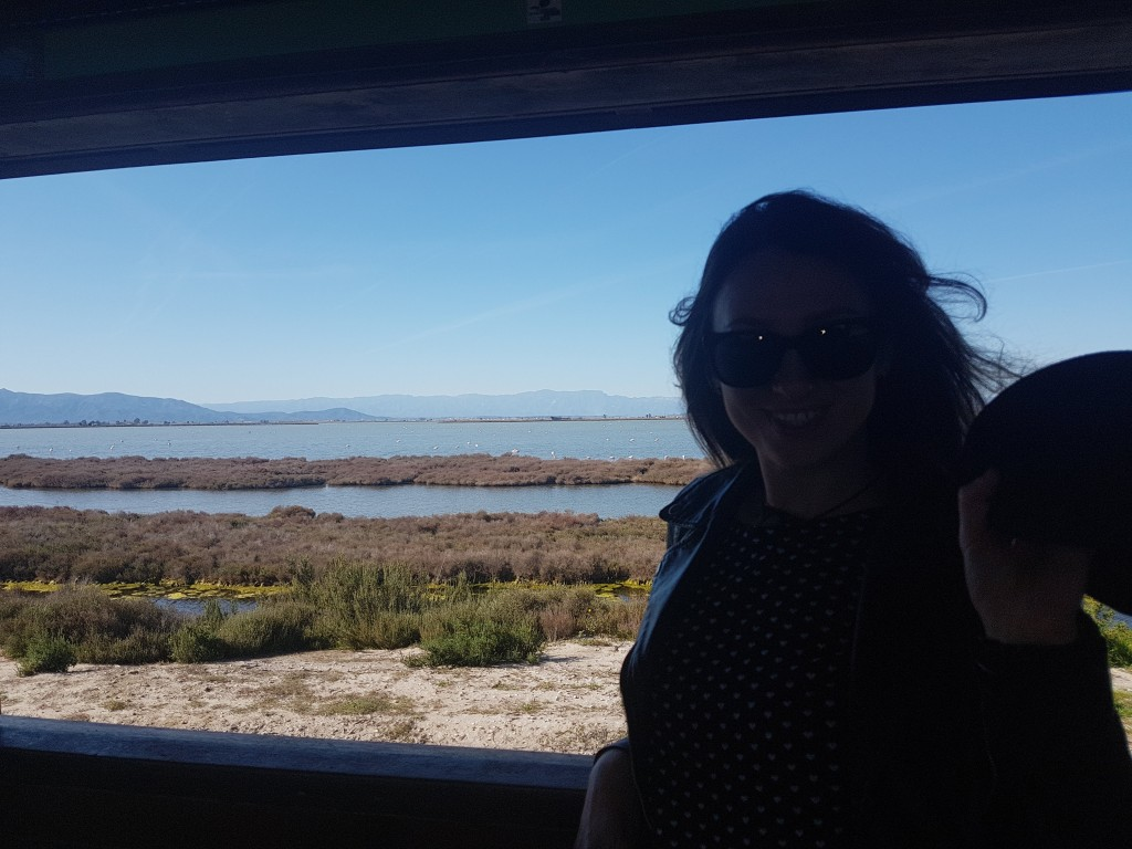 A girl observing Flamingos in their natural habitat from Mirador de la Tancada