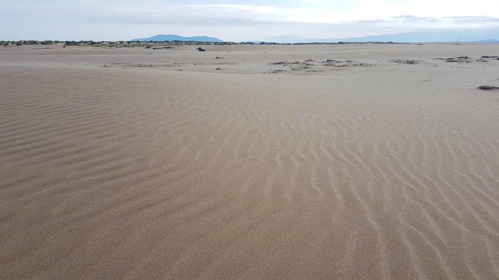 Sand dunes of El Fangar Peninsula