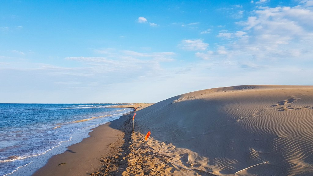The contrast of the sand dunes and the sea in El Fangar peninsula of Delta Ebro natural park in Catalonia